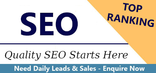 Looking for the best SEO service in Gold Coast, talk to us today!